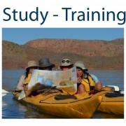 Study Training